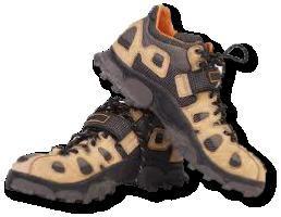 acheter populaire c93a8 4d55f Choisir ses chaussures de Marche Nordique